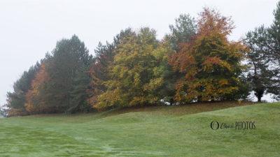 Golf d'Ableiges en automne
